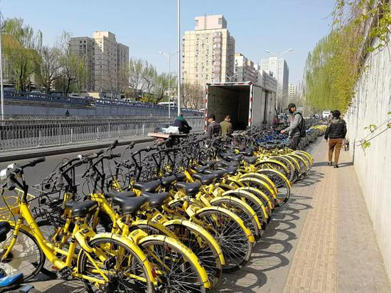 (小蓝单车运营人员在单车堆积的路边继续投放车辆)
